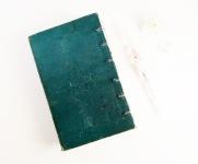 greenjournal2